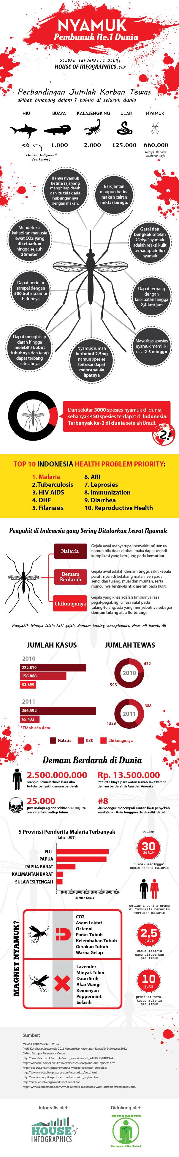 Infografis Nyamuk