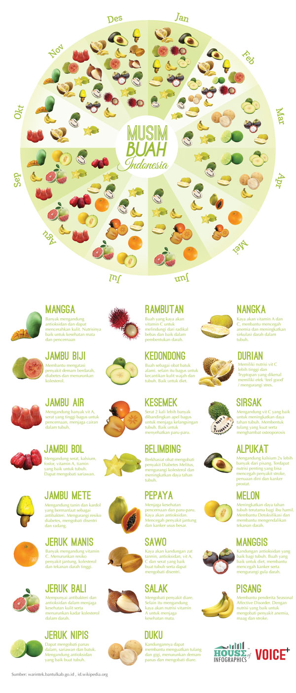 Infografis Musim Buah di Indonesia by House of Infographics