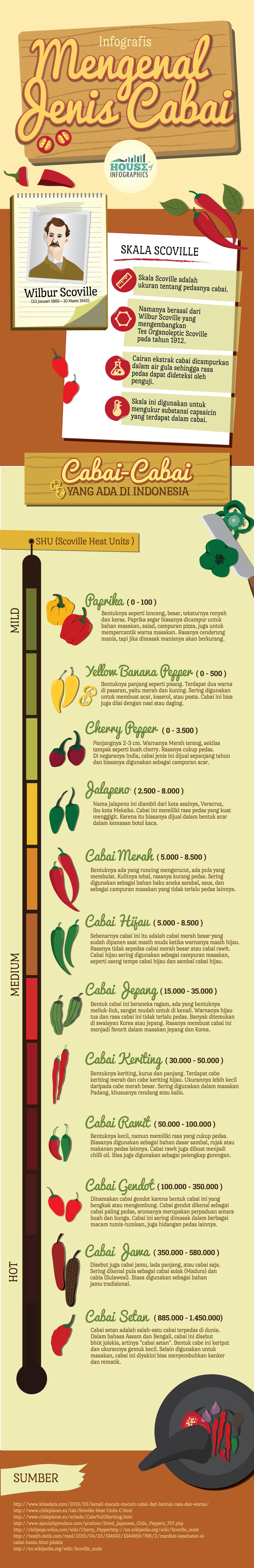 Infografis Mengenal Jenis Cabai