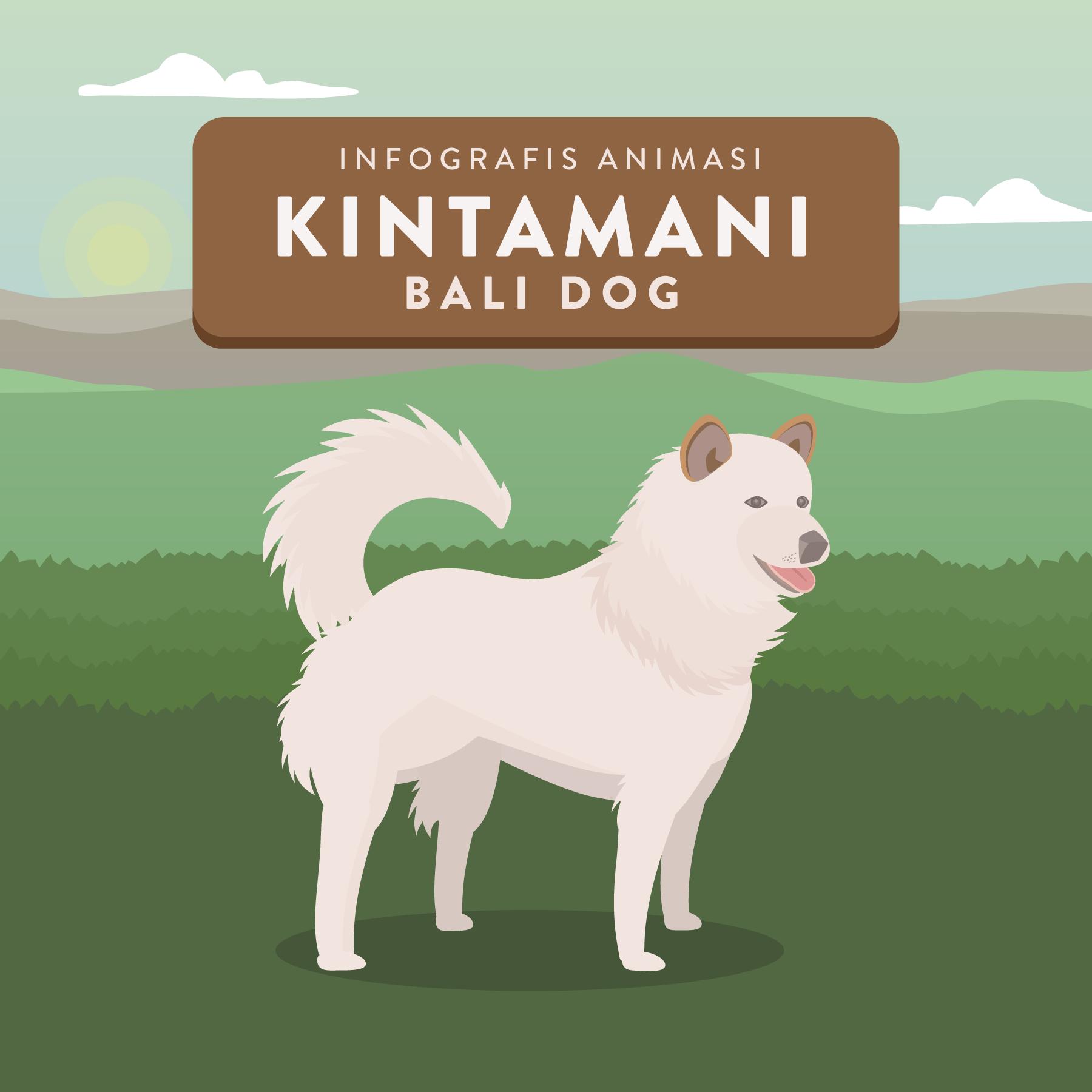 Animasi Anjing Kintamani Bali